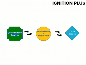Ignition Plus Pathway